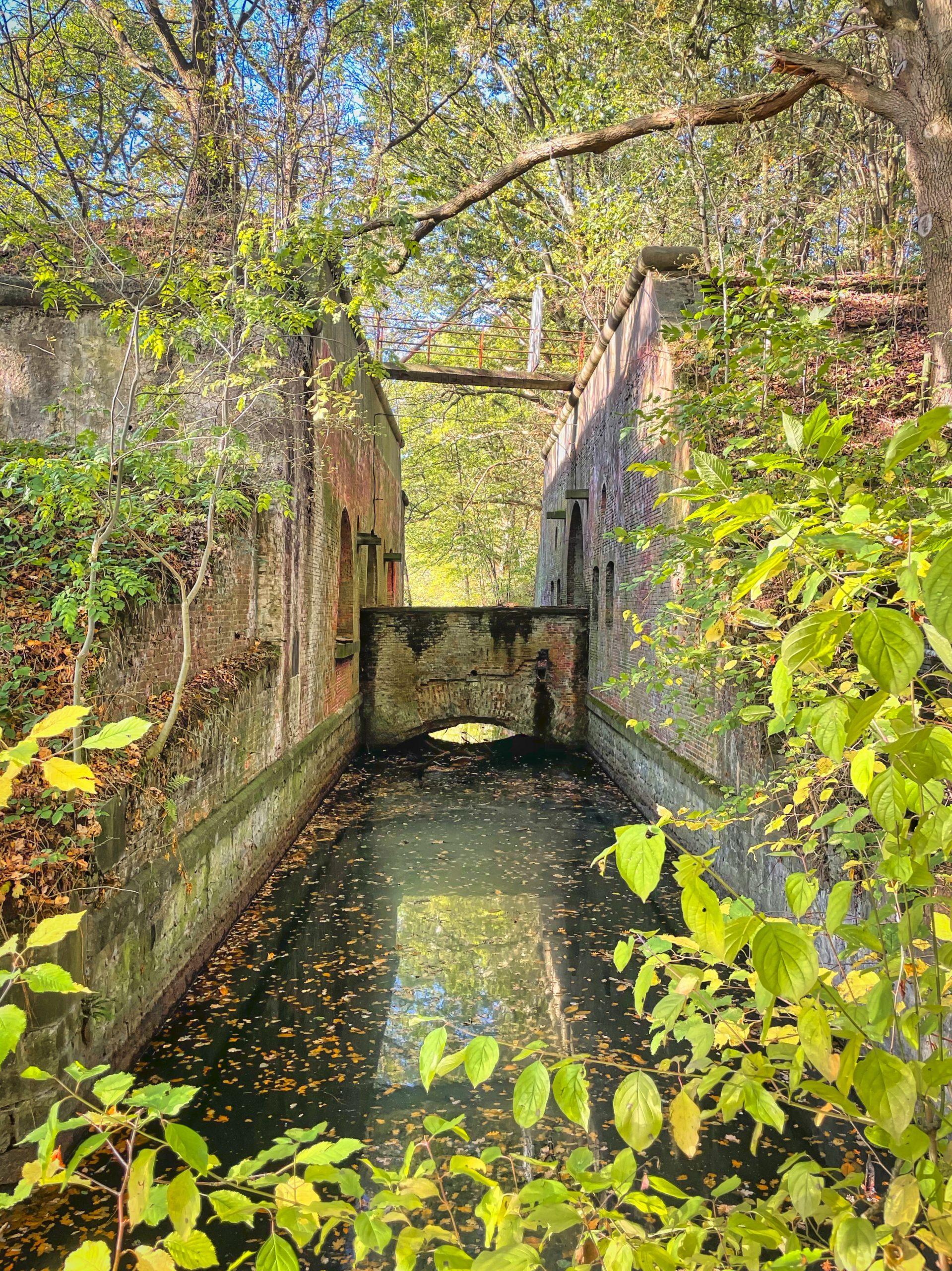 Herfstwandeling Edgem (rond Hof Ter Linden en Fort V)